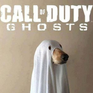 Call of Dog